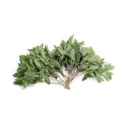Mung Linsen 1kg | Moong Dal