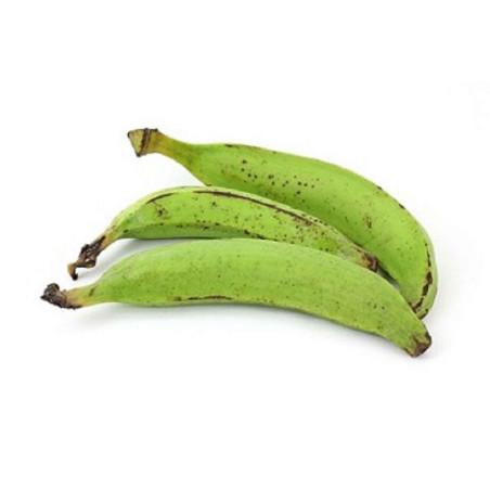 Basilikum Thai 100g | Horapa Leaf (Süß)