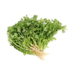 Chillischoten Rot 100g | Thai