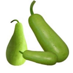 Chillischoten Grün 1kg Indisch